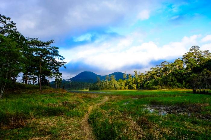 Bên trong hồ Tuyền Lâm