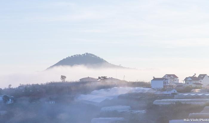 Một góc làng hoa Thái Phiên chìm trong sương mù.