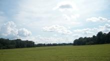 Trảng cỏ Bàu Lạch (Bình Phước)