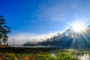Hồ Tuyền Lâm trong sương sớm
