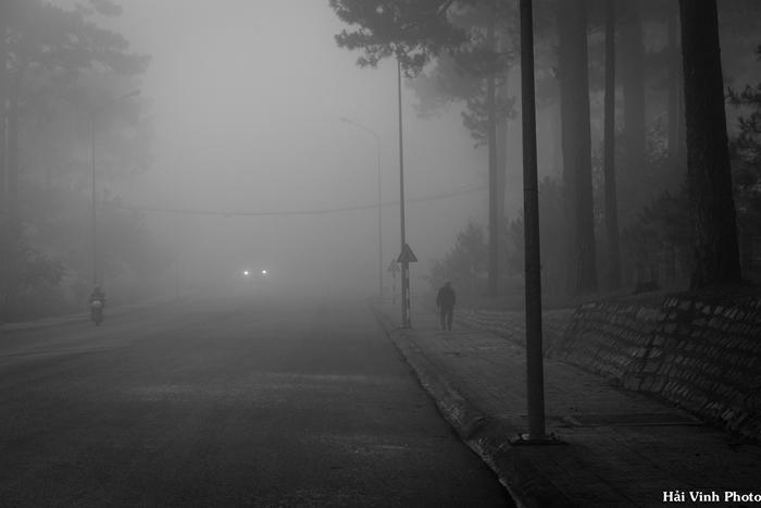 Sương mù dày đặc vào sáng sớm ở Đà Lạt