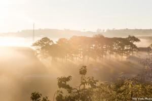 Sương giăng kín khắp các quả đồi và tạo nên những khung hình tuyệt đẹp.