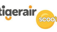 Tigerair sẽ chấm dứt hoạt động từ cuối năm 2017