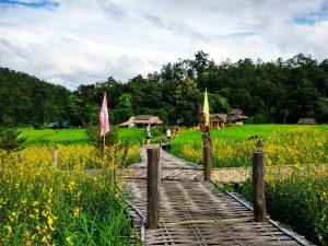 tại Bamboo Bridge