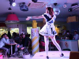 Maid Cafe biểu diễn âm nhạc phục vụ quý khách